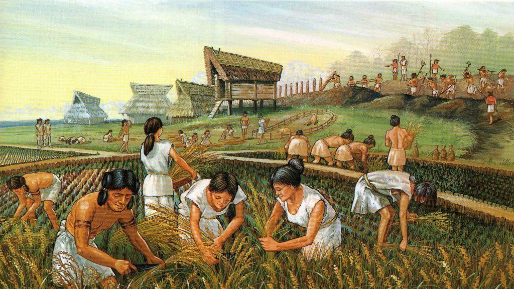 نقش کشاورزی و مالکیت زمین در شکاف طبقاتی